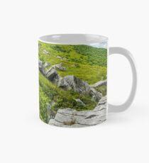 stones and boulders in Carpathian mountain range Mug