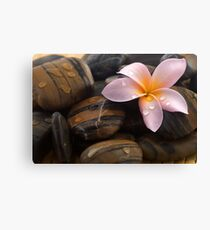 Frangipani and polished stone Canvas Print
