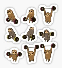 OLYMPIC LIFTING SLOTHS Sticker
