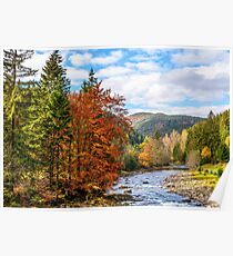 Mountain river in autumn forest Poster