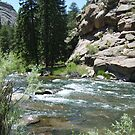 Rocky Rivers by Lori Durocher