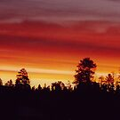 Utah Sunset by BigAl1