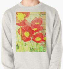 Poppyfied Pullover