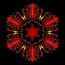 The Ruby Flame Broach by owlspook