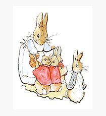 Nursery Characters, Peter Rabbit, Beatrix Potter  Photographic Print