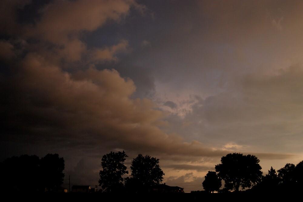 Backyard Sunset by Robert Baker