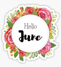 Hallo Juni - monatliche Abdeckung für Planer, Bullet Journals Sticker