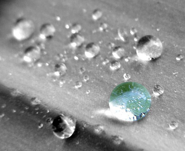 water droplets on a leaf ... by SNAPPYDAVE