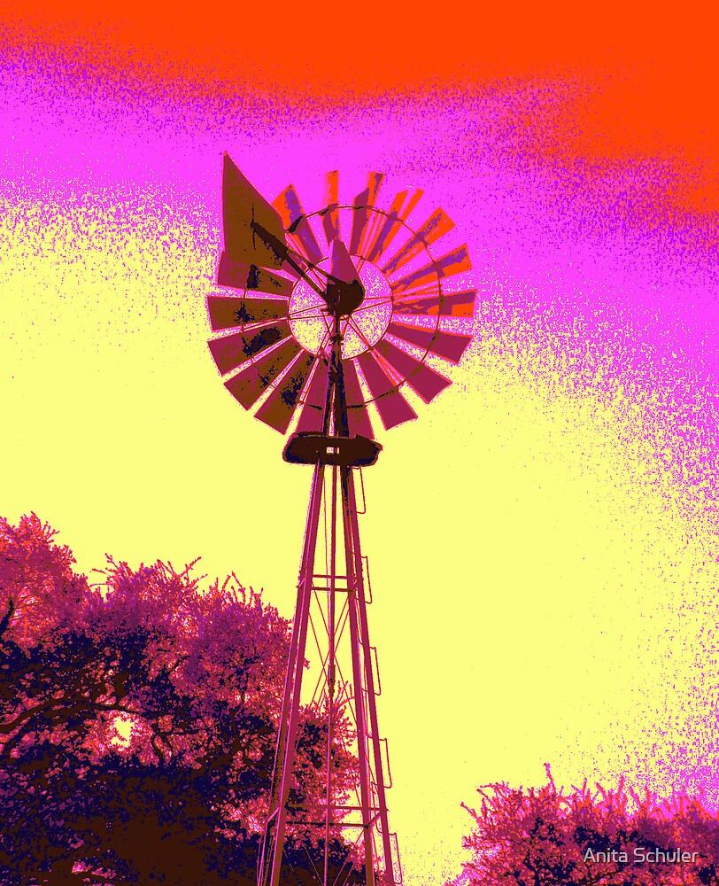 Texas Wind by Anita Schuler