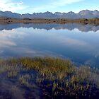 Lake Peddar - reflections by Richard  Stanley