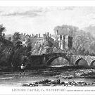 Lismore castle, Co. Waterford,Ireland by Boxzero