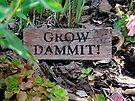 Gardening Directions #2 by Susan McKenzie Bergstrom