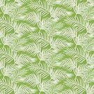 «Palm Leaves_Greenery» de miavaldez