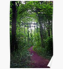 Adventure Awaits woodland trail Poster