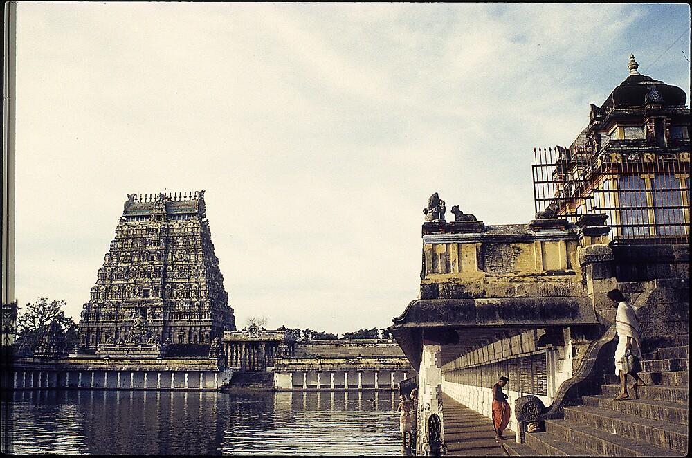 chidambaran temple bathing by neil davis