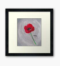 Pretty Red Poppy  Framed Print
