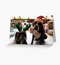 Merry Christmas!  -Boxer Dogs Series- Greeting Card