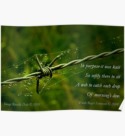 Collaboration ~ Beauty and the Barbed Wire Poster