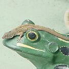 Hitching a ride on a frog by Zephyrme