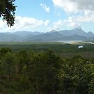 the Hinchinbrook Channel by Chris Cohen