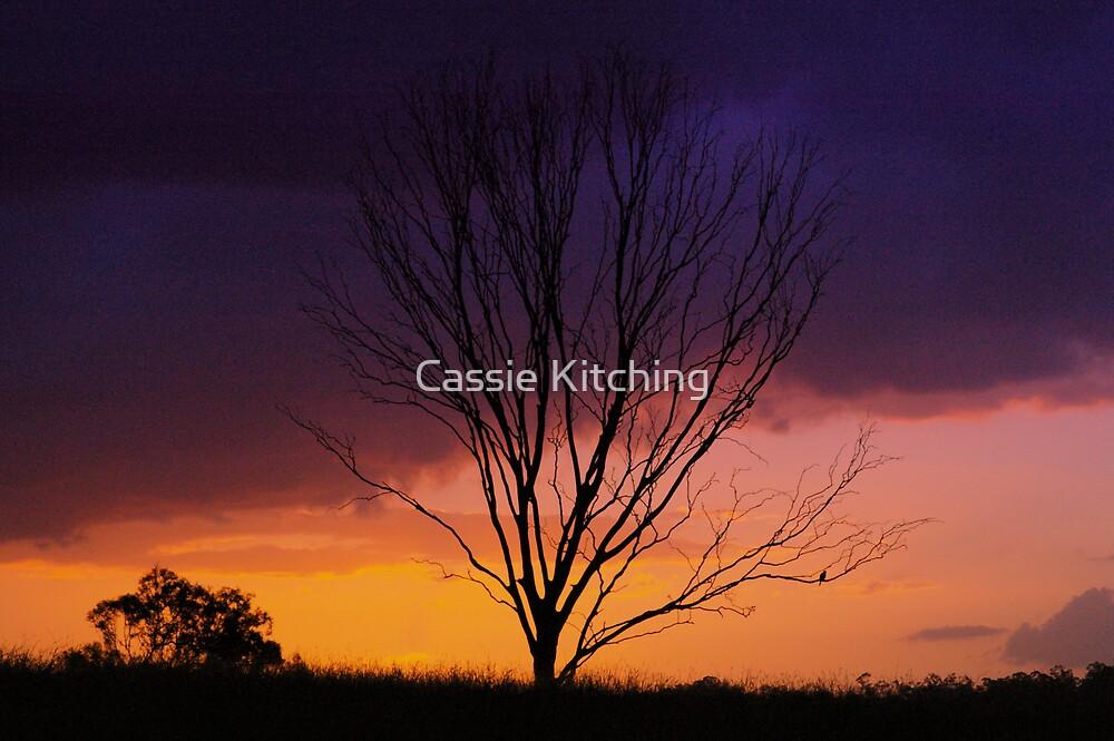 Bare Autumn  by Cassie Robinson