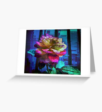 A Rose of Many Colours Greeting Card