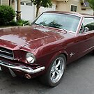 A 66 FORD MUSTANG by DonnaMoore