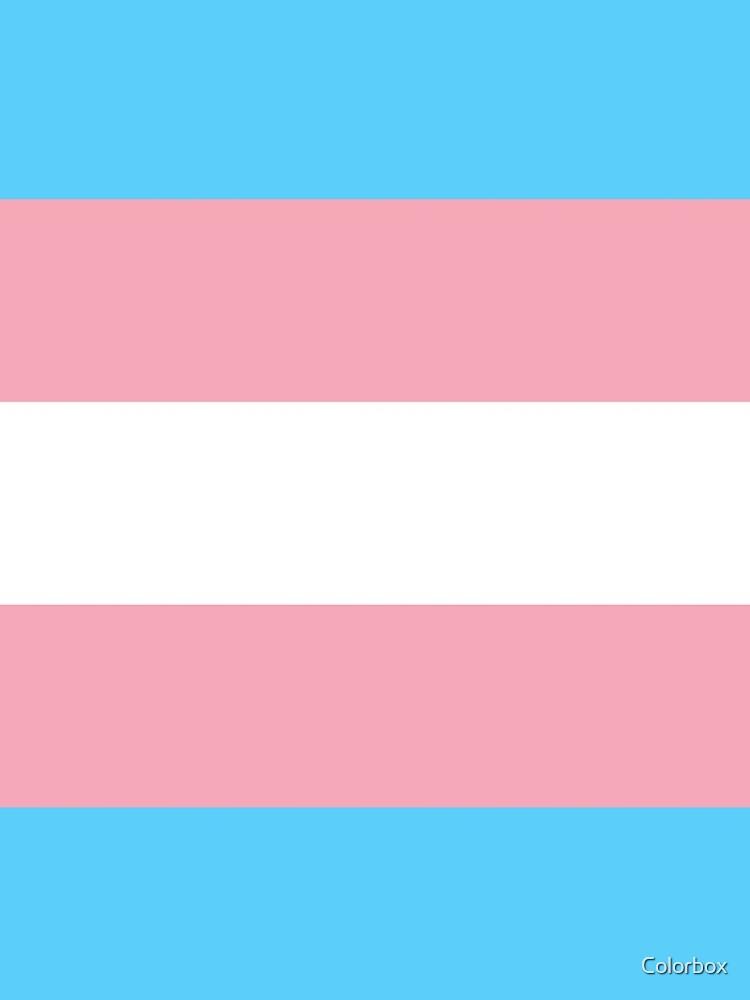 Transgender Pride Flag by esyspam