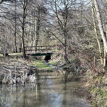 Little bridge at Low Barns Nature reserve by hilarydougill