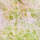grass space geometry by Marianna Tankelevich