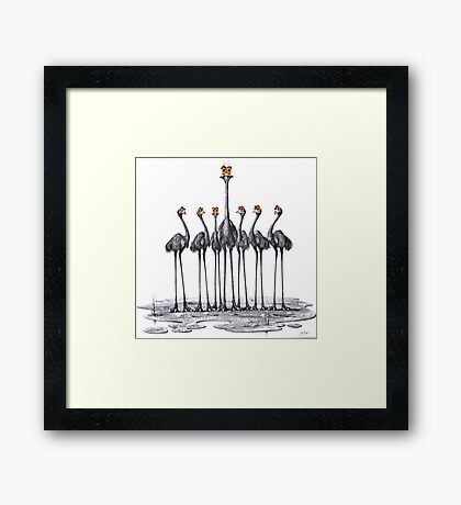 A Longneck and Six Stubbies (White) Framed Print