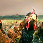 chicken attitude by Dan Shalloe