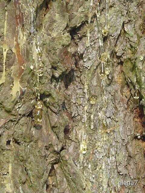 Crying tree by elena7