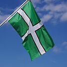 Devon Flag by lezvee