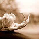 Snail by Atreju Hood