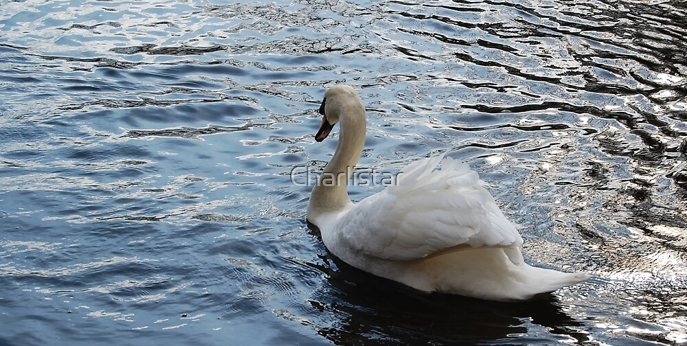 swanswell by Charlistar