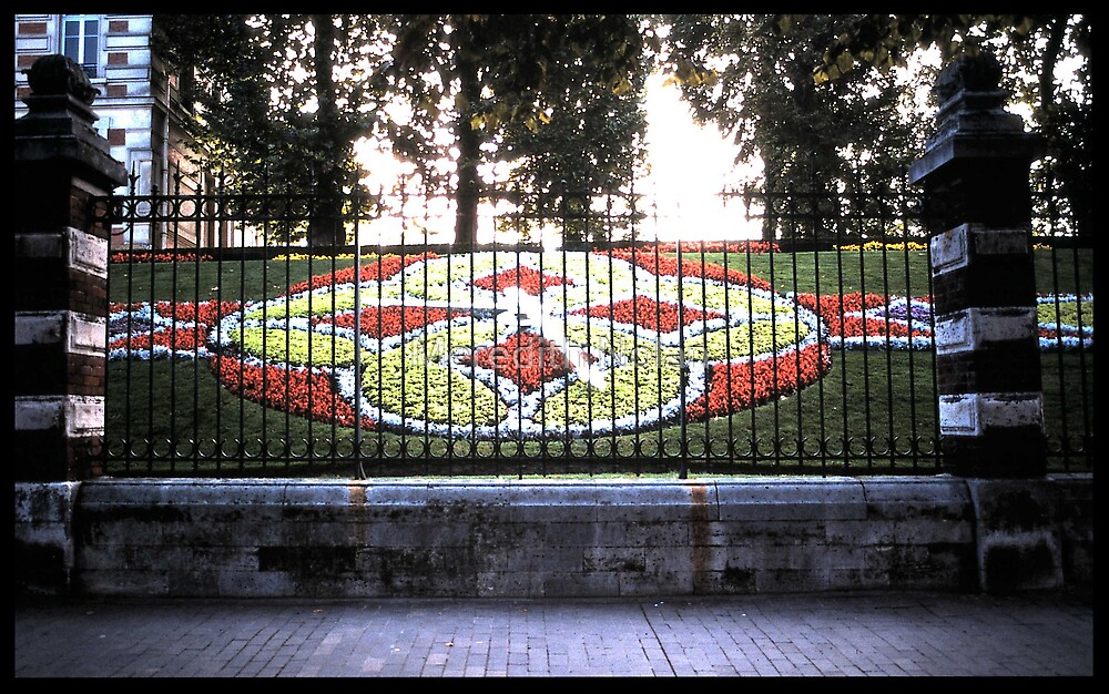 Floral Clock by Meredith Nolan