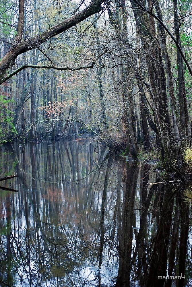Foggy Morning Creek # 2 by madman4