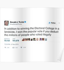 Donald Trump - Millions of People Who Voted Illegally Poster