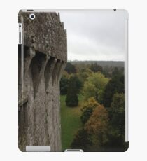 Ireland - Blarney iPad Case/Skin