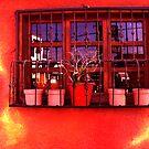 Window by dakota1955