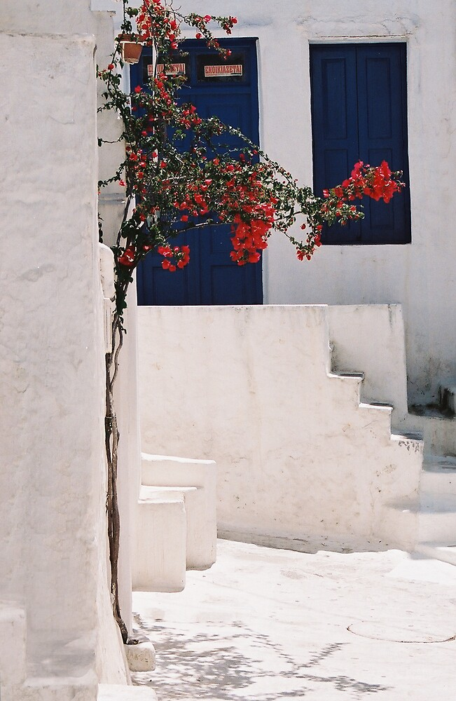 blue door by ErinPhotography