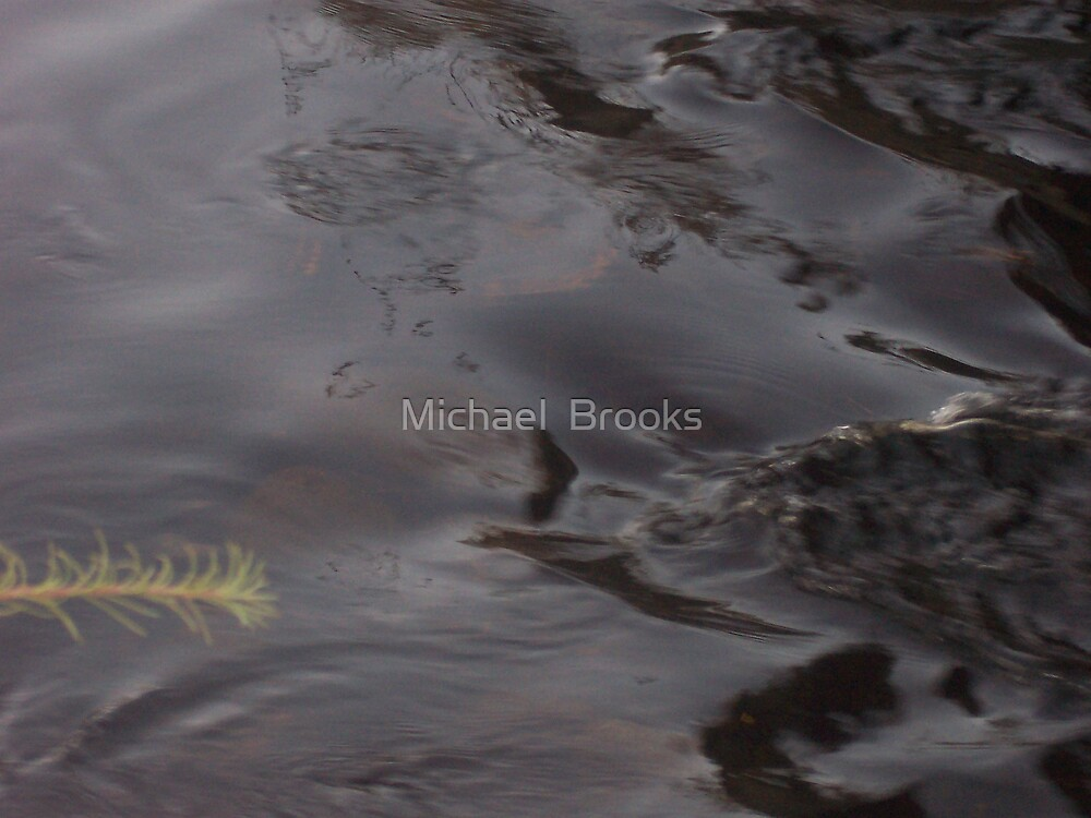 Moosehead Lake Water Flow by Michael  Brooks