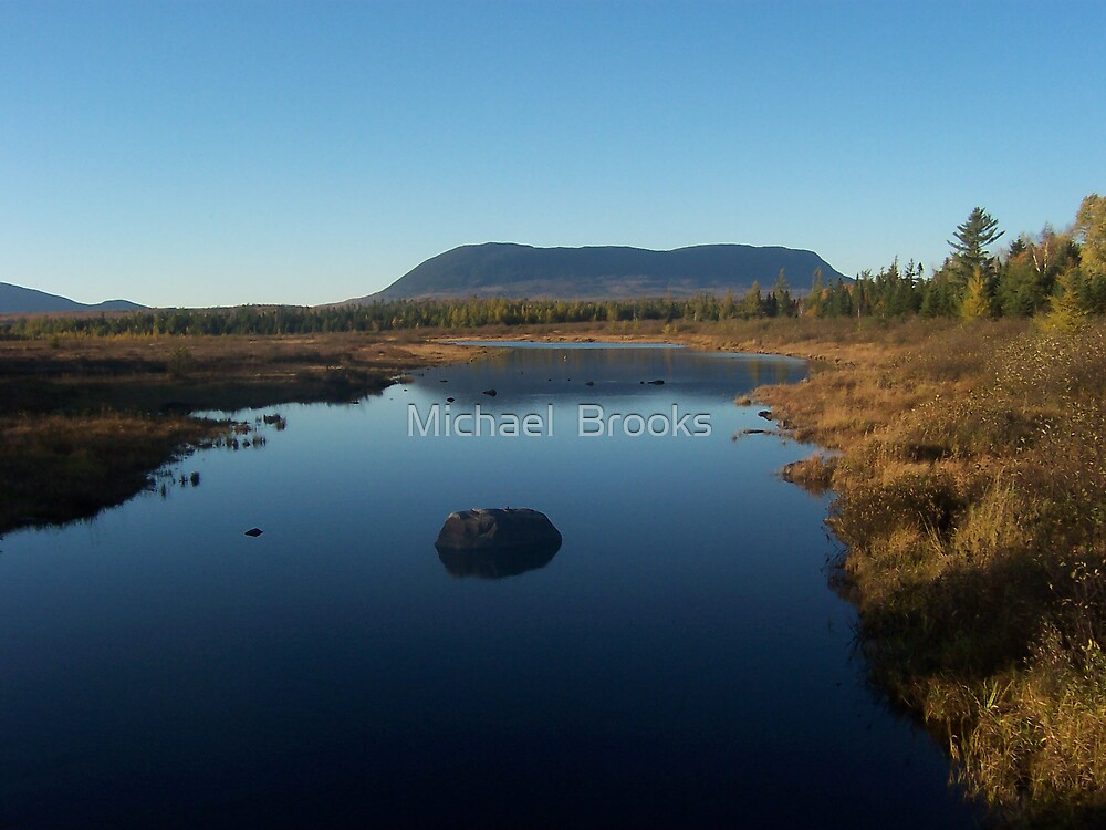 Moosehead Lake- Moose watch 002 by Michael  Brooks
