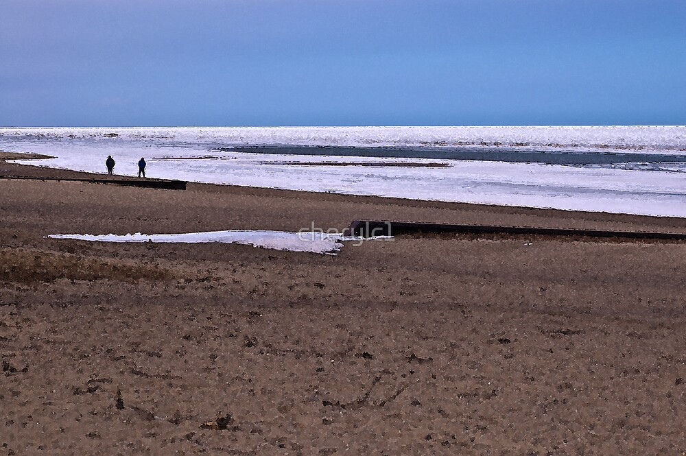 The Beach Walkers by cherylc1
