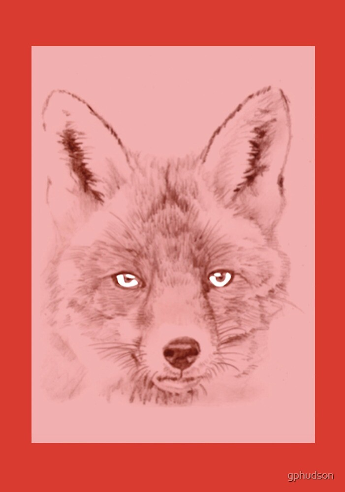 Red Fox with red border by gphudson