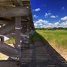 Under the Boardwalk by Brian Puhl IPA