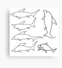 sea shark set isolated on white background Canvas Print