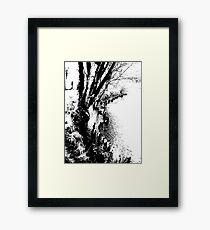 Edge of the river Framed Print