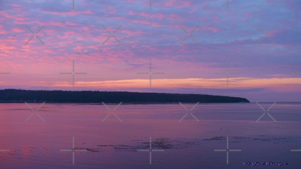 Cape Mudge Sunrise by Gail Bridger